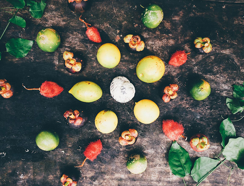 foodforest2.jpg