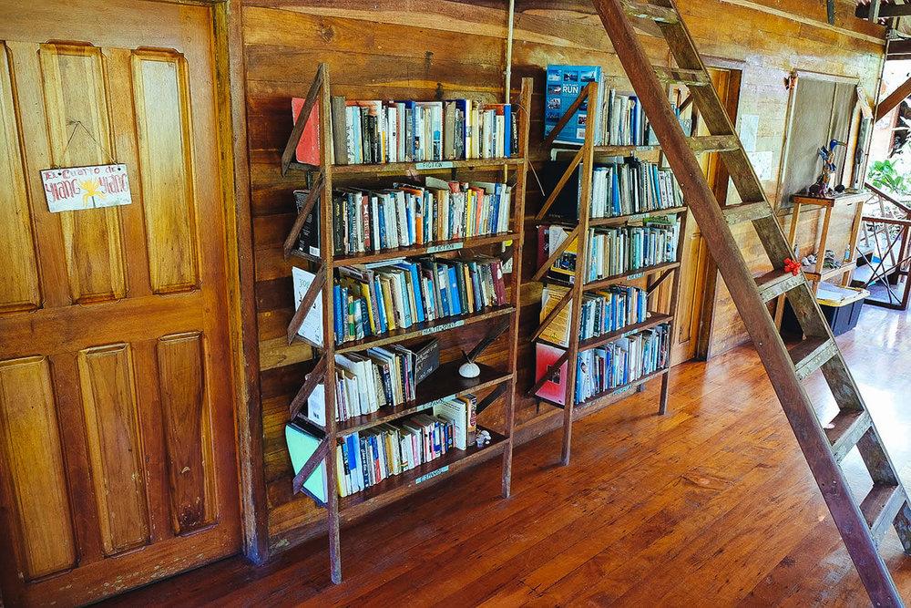 Permaculture & Herbalism library