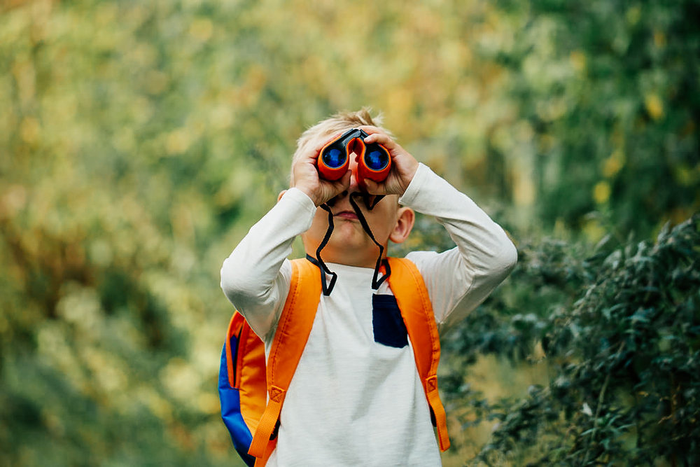 The-little-boy-young-researcher-exploring-with-binoculars-1041187486_1258x838.jpg