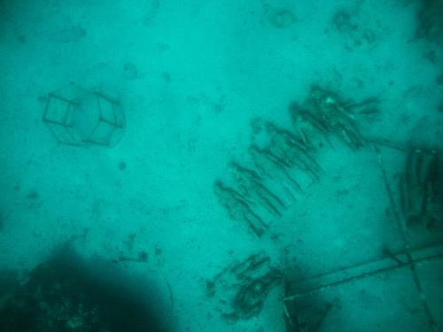 RachelTravels.com/Grenada Underwater Sculpture Park