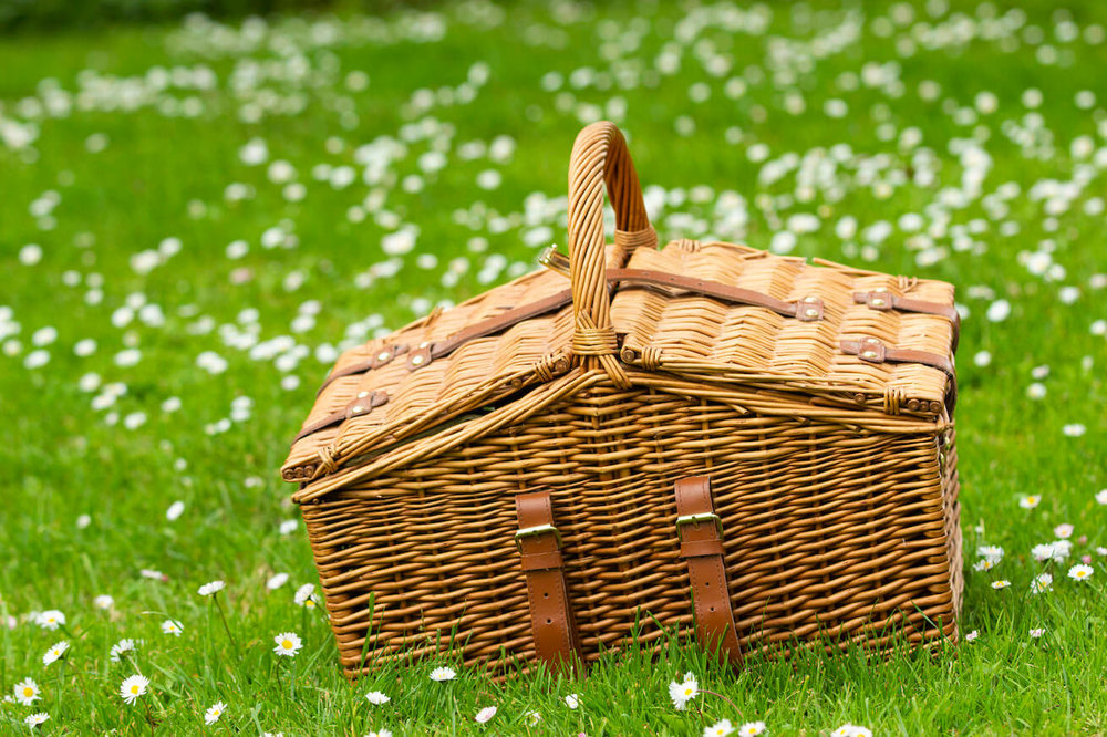 feature_picnic-7.0.jpg