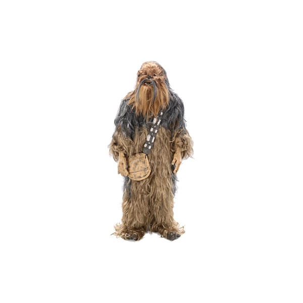 Wookie Costume ($20 /day)