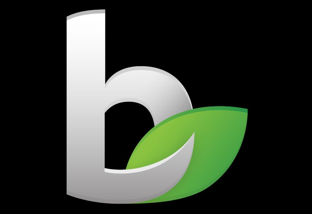 Bizfi Logo.png