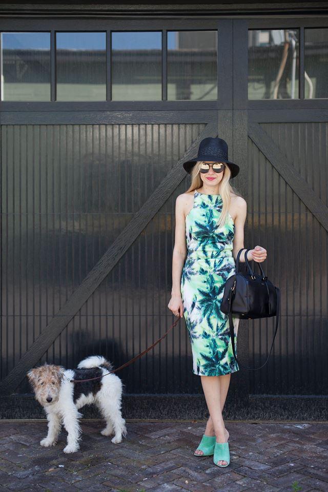 Palm Tree Paradise, Liz Best, Liz-Best, Mimi Photography, Nice France, Pixie Market Dress, Pucci Shoes, Dannijo Bracelet