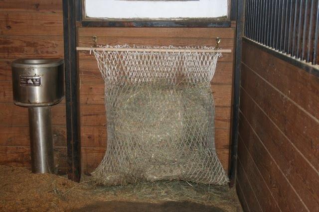 haynetstall1.jpg