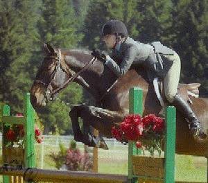 horse jump5.png