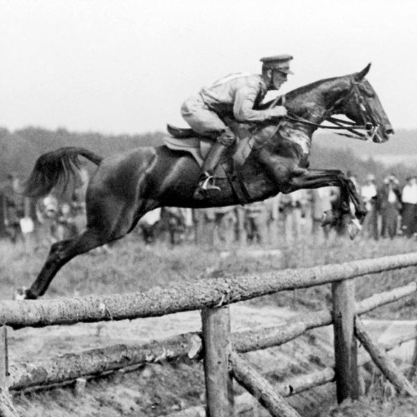 horse jump4.png