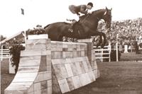 horse jump10.png