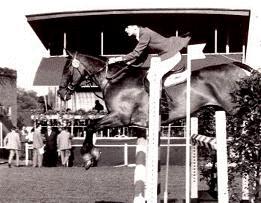 horse jump12.png