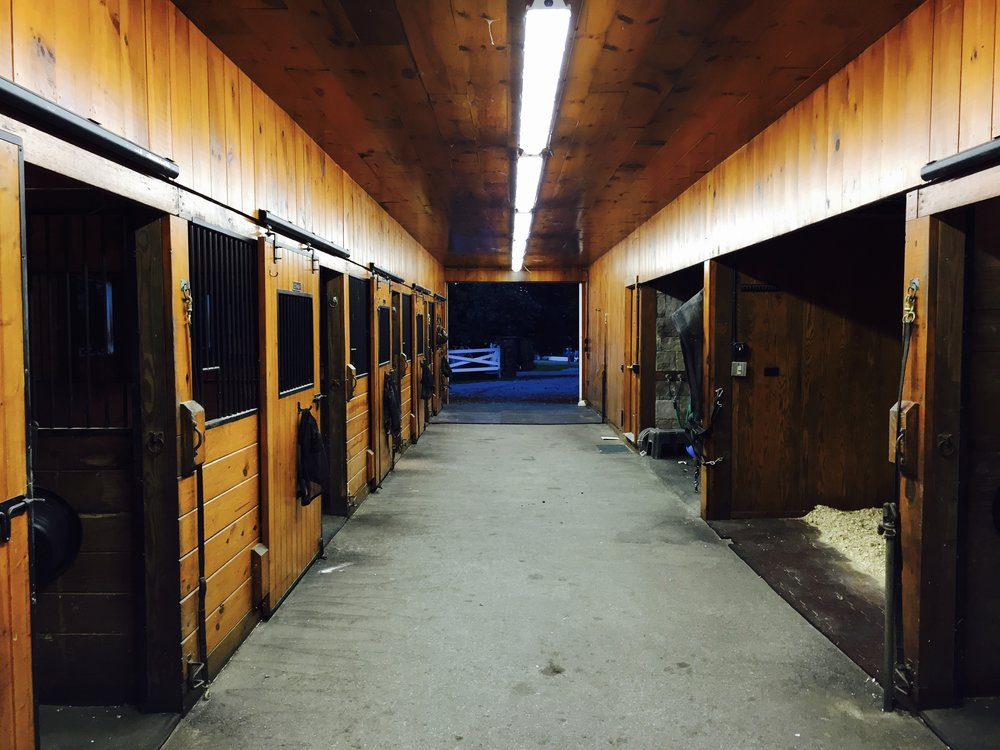 6 Stalls+Wash & GroomingStalls -