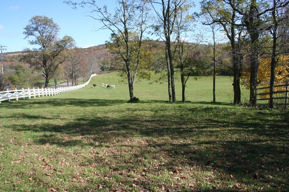 20 acres -