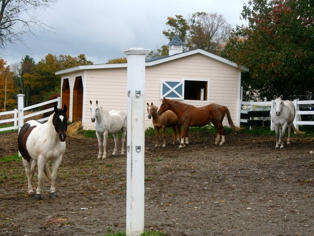 4 run-in sheds -