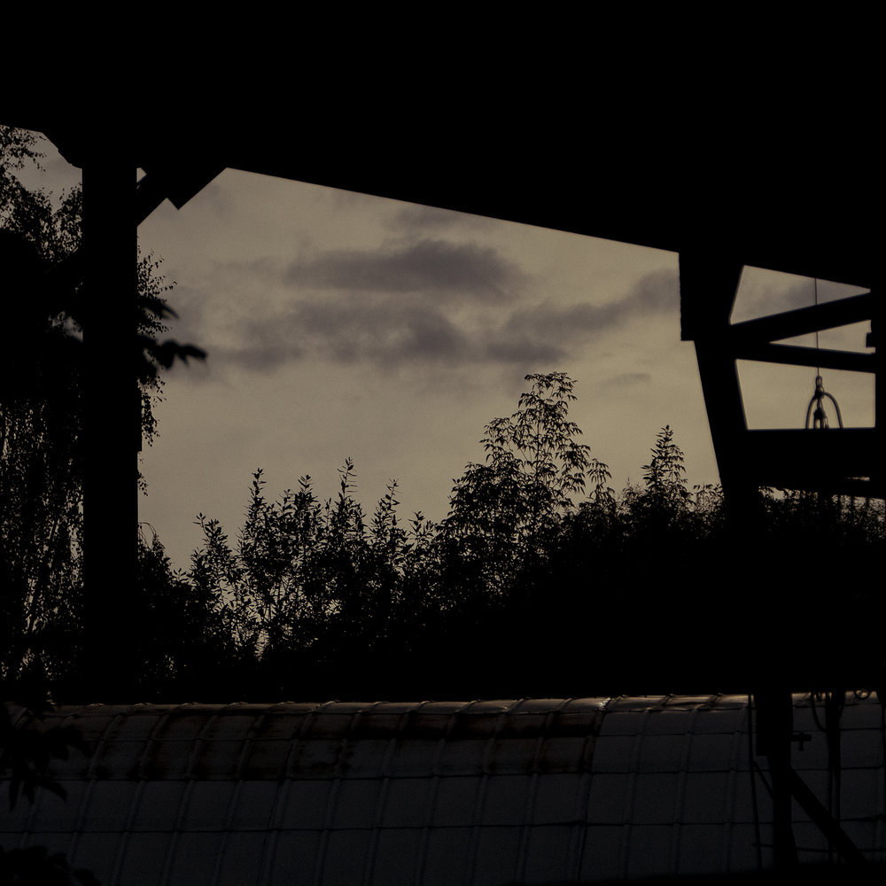 00.n.black.siluett.02.jpg