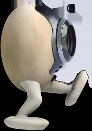 Free ranage egg cam