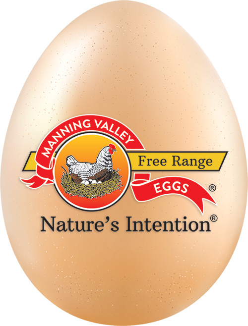 A nutritious Manning Valley egg