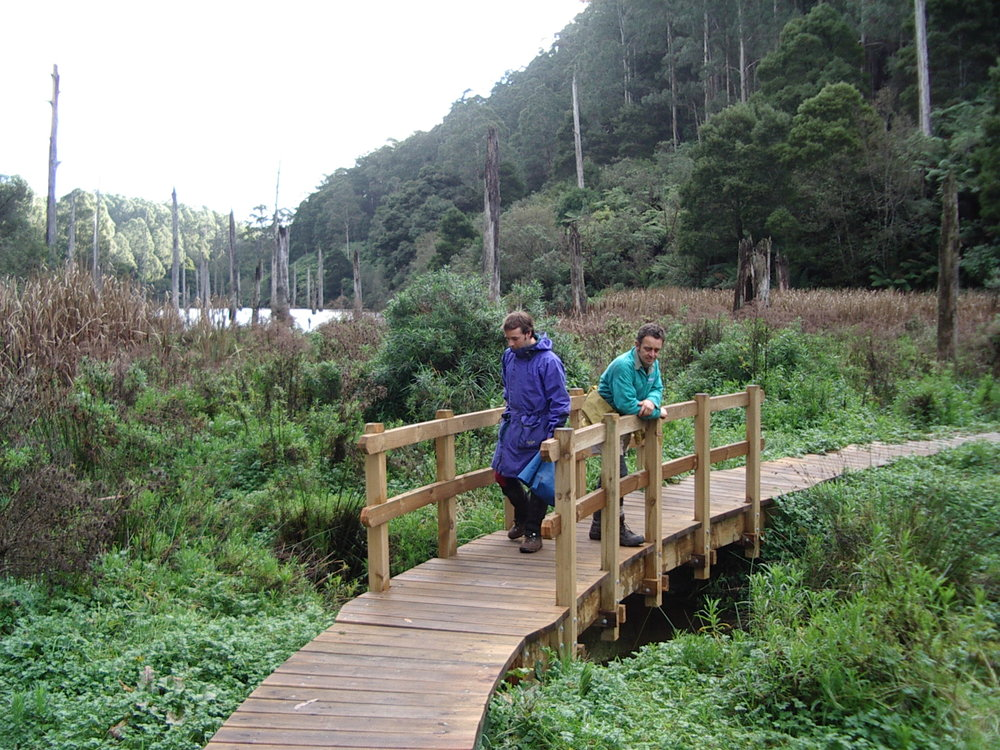Timber Bridge with Handrails