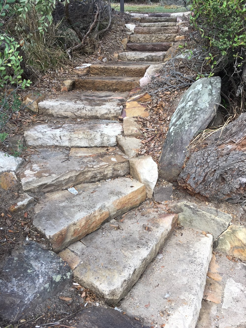 Completed steps