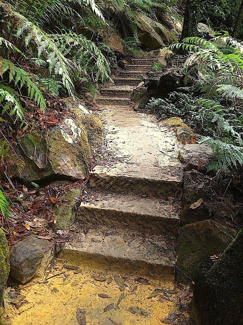 Evan's quarried step stairway 1.jpg