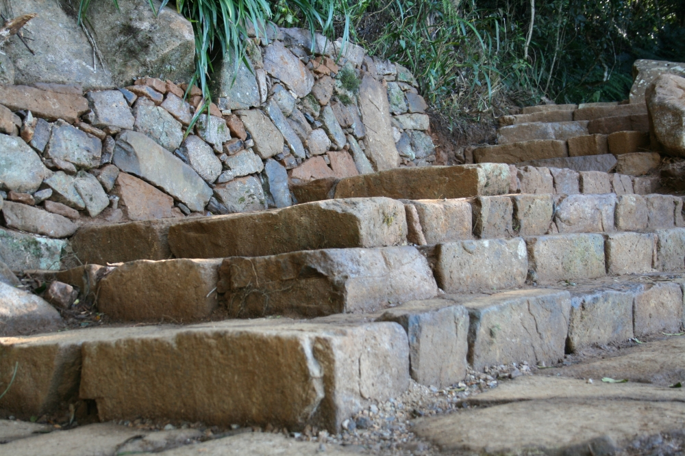 Wollumbin_Walling_and_steps_a.JPG