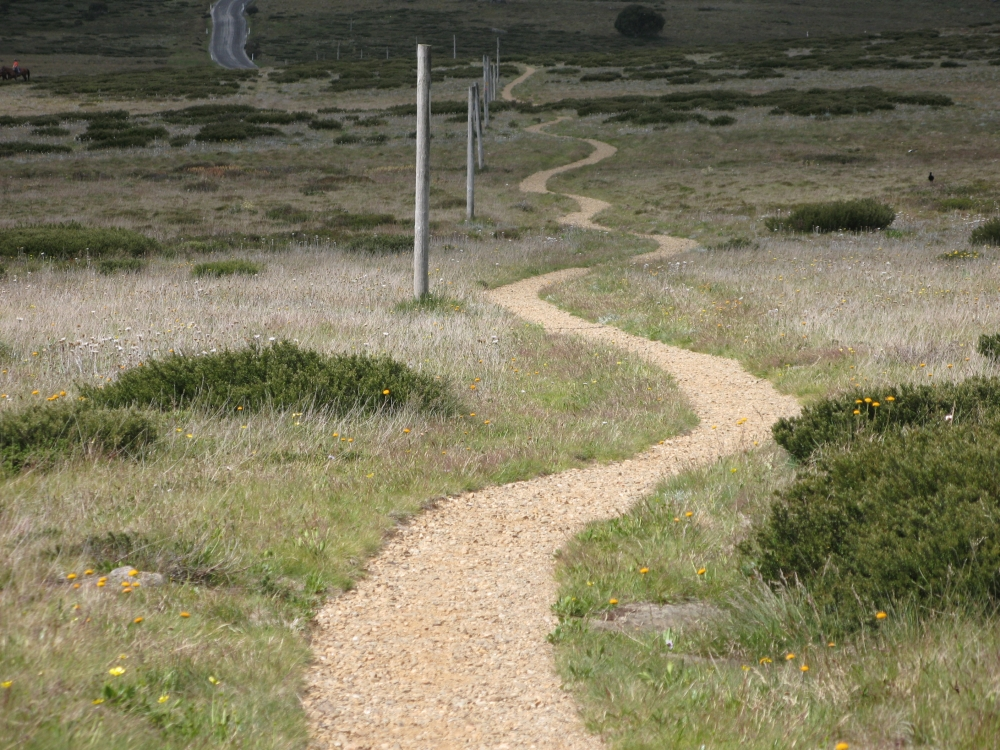 Completed path