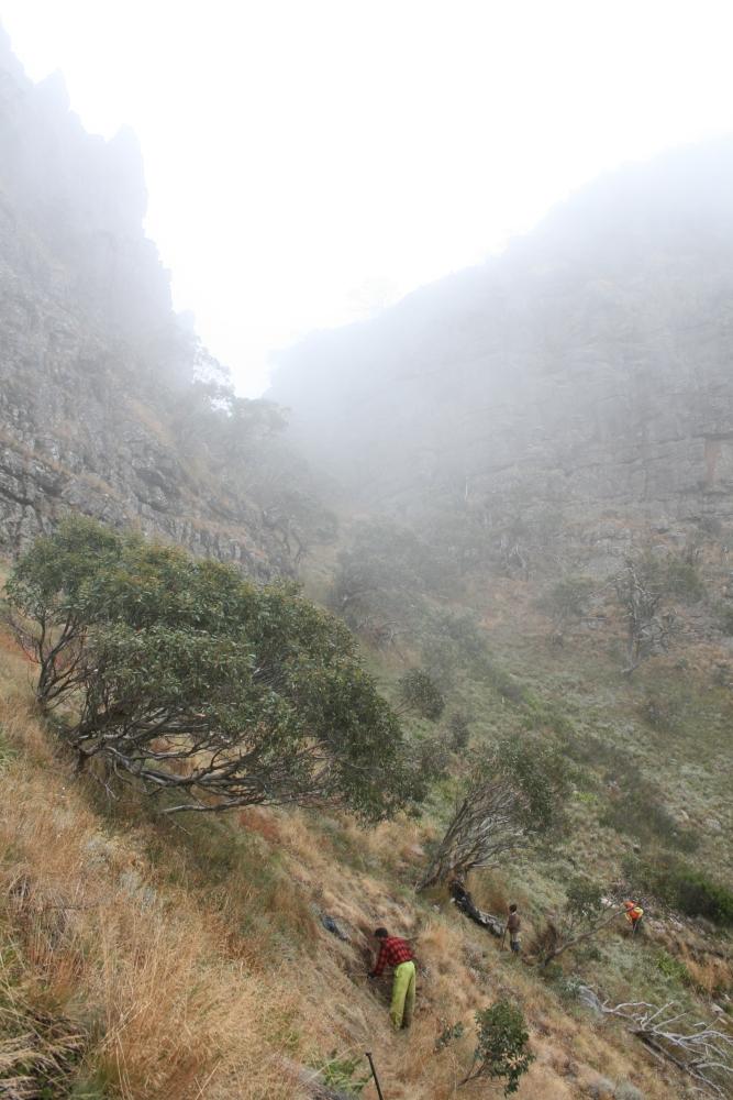 Mt Magdala