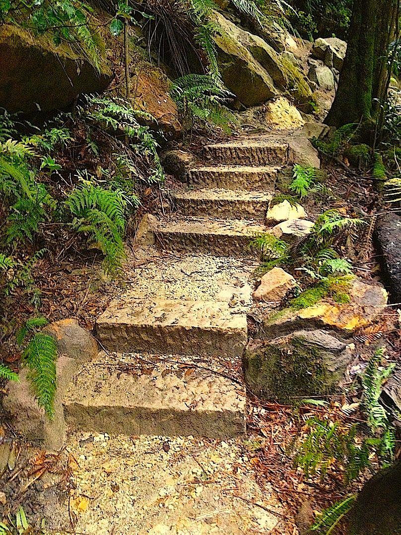 Evan's steps 3.jpg