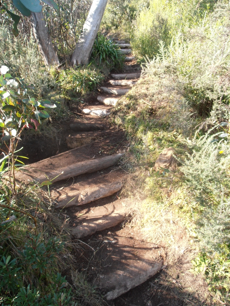 Buried Timber Stairs