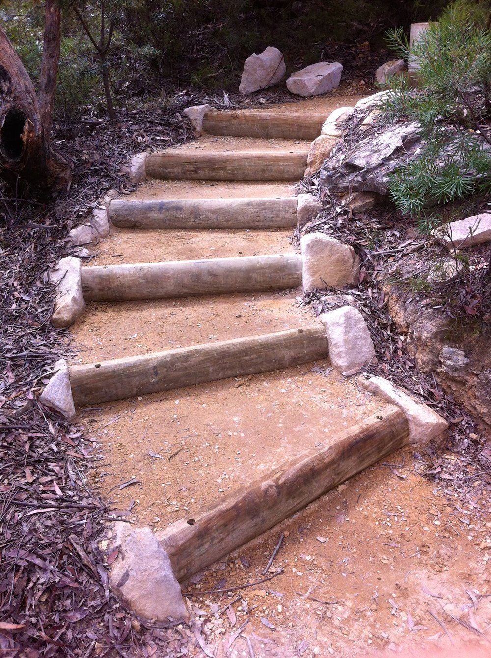 Round Timber Steps