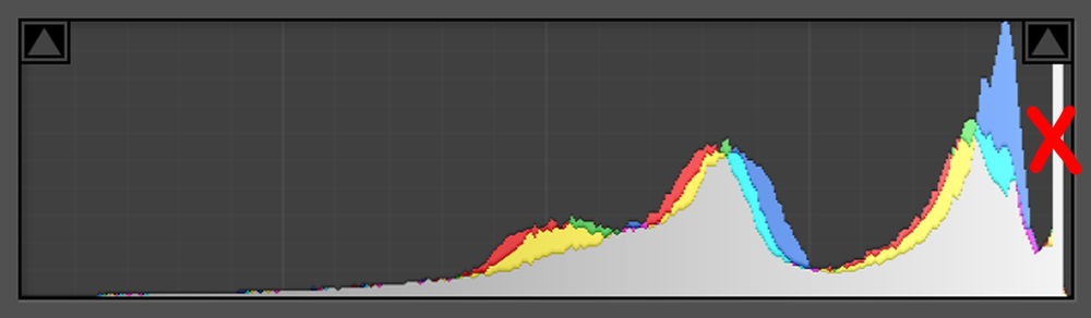 Avoid peaks on the right - This type of image is not good for ETTR.