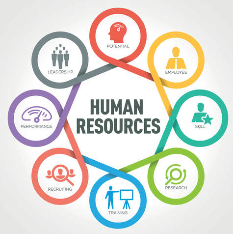 HR network: payroll, counsel, immigration, entity set-up - Our expert network offers fully-customizable suite of services and premium support, so you can navigate the entire lifecycle of U.S and international business from start to finish, and everything in between.