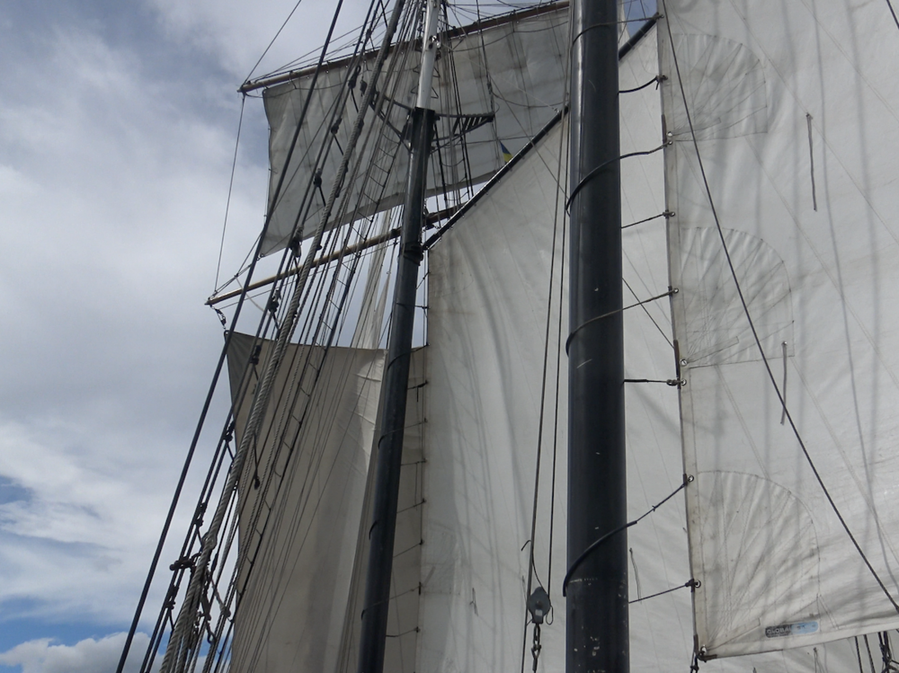 5) TALL SHIPS.png