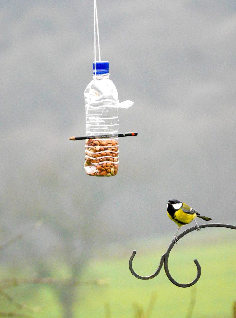 Rubbish Science Plastic Bottle Bird Feeder Project