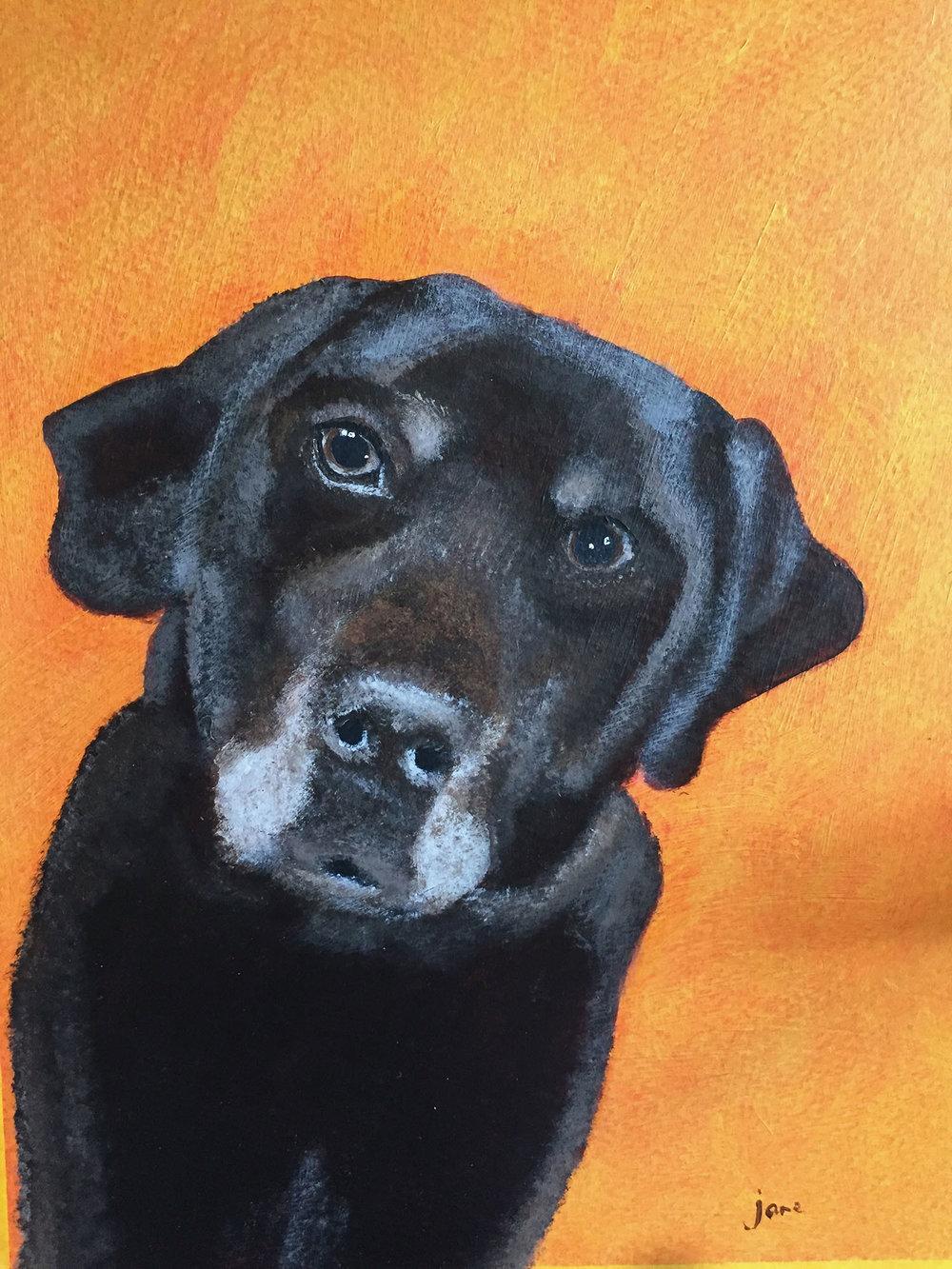 Barney , Acrylic on board, 30 x 21 cm unframed