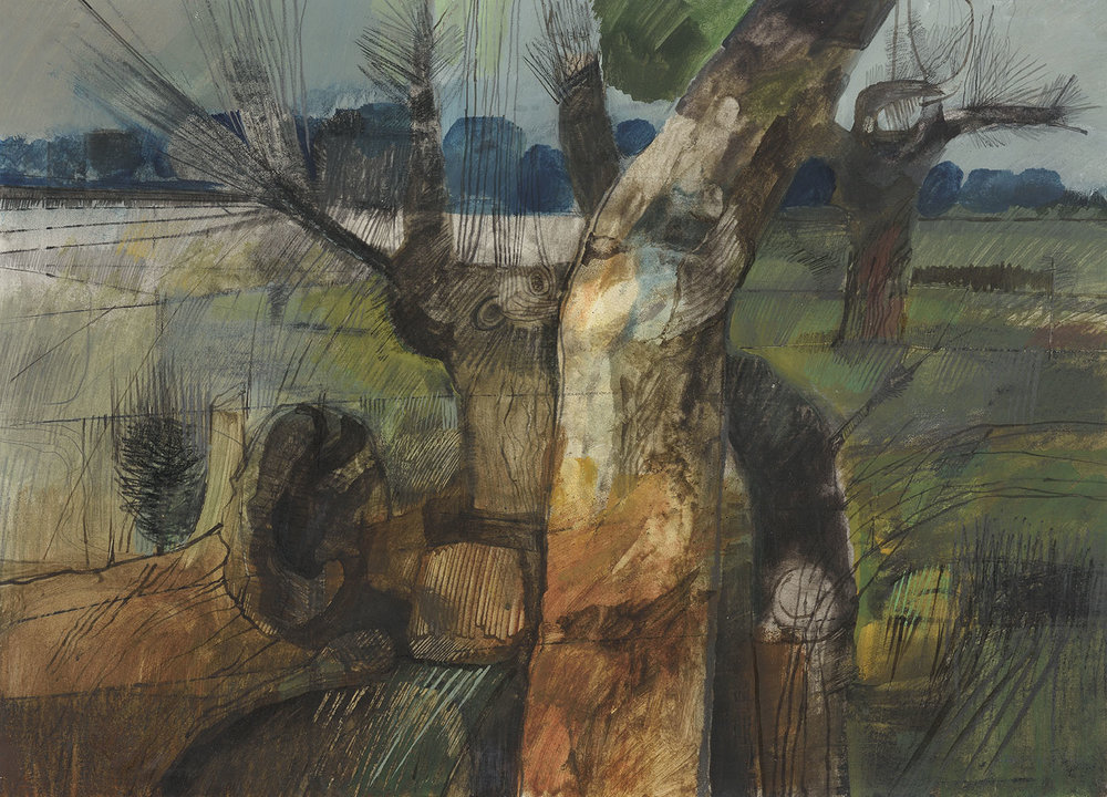 Henry Collins (1910-1994)    Stripped Tree Trunk,  c.1967, Pencil/graphite and watercolour on paper, 21 x 29 in  [CAS 8] Acquired in 1967