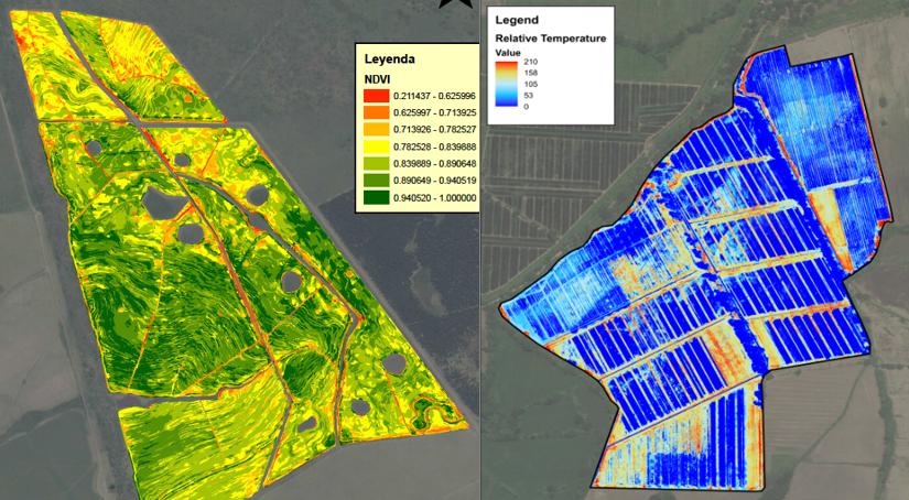 Drones e imágenes satelitales - Realizamos seguimiento a su cultivo, por medio de drones para tareas especificas como medición de áreas o identificación de problemas en campo. Y contamos con el servicio de imágenes satelitales para labores de mayor área.