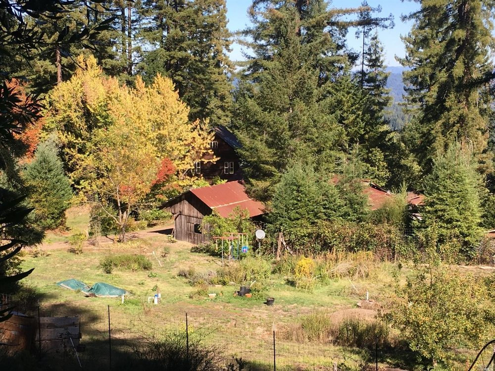 a sunny glen surrounded by trees contains this family home for sale, Philo, CA