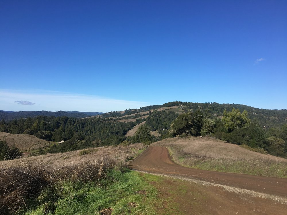 Clow Ridge Road on a property for sale in Philo, CA.