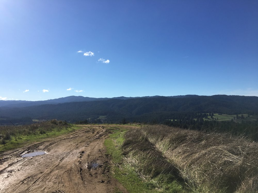 Large homesite on a property for sale on Clow Ridge in Philo, CA.