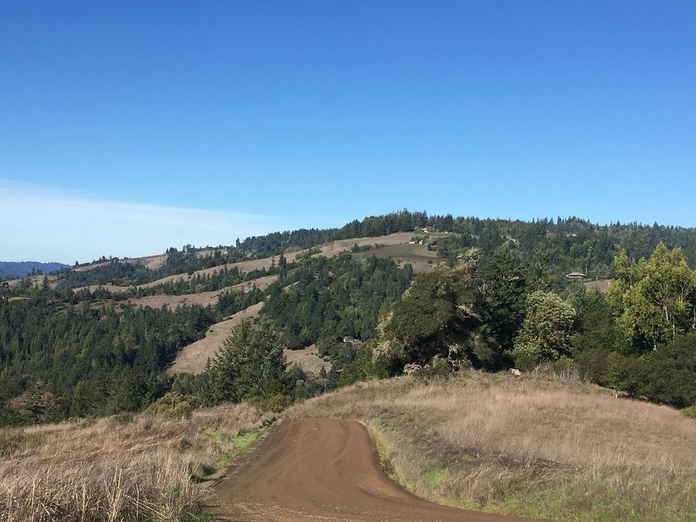 Views of Holmes Ranch on a property for sale on Clow Ridge in Philo, CA.