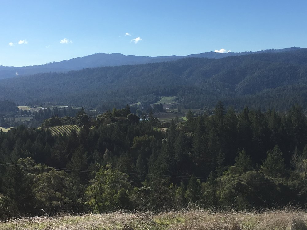 Panoramic views from a property for sale on Clow Ridge in Philo, CA.