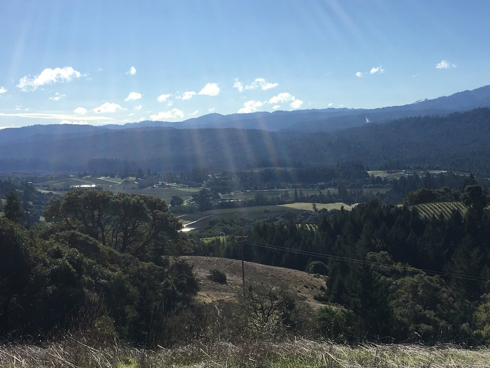 Panoramic views from a property for sale on Clow Ridge in Philo CA.