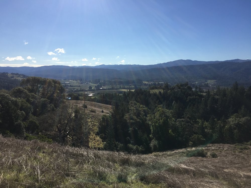 More views from a property for sale on Clow Ridge in Philo, CA.