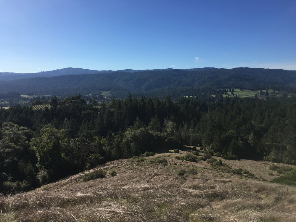 Looking over a property for sale on Clow Ridge in Philo, CA.