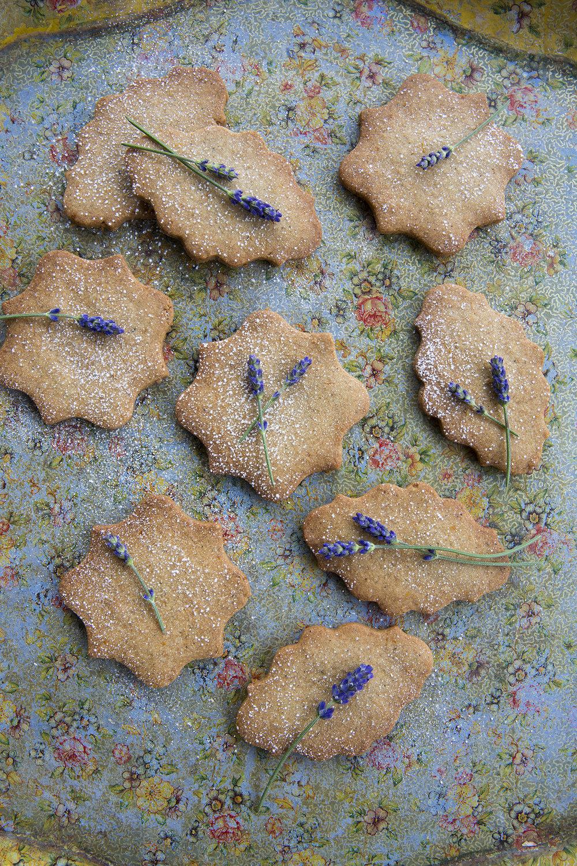 Buckwheat_Lavender_Sables_03.jpg