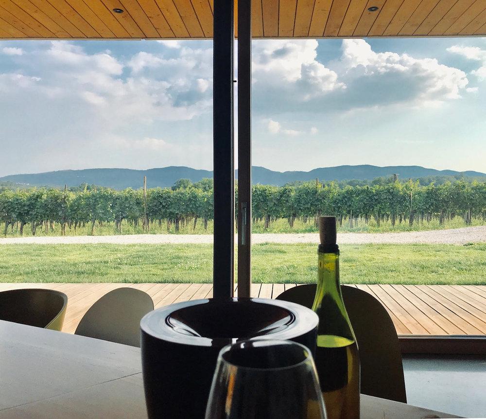 Slovanian Wines