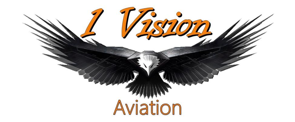 1 vision logo.png