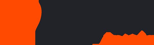 LVI-logo-color.png