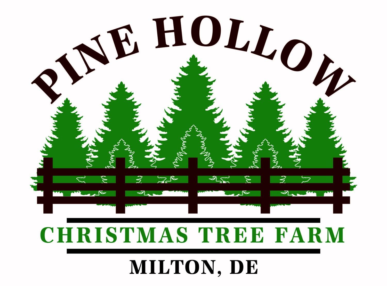 Christmas Tree Farm Logo.Christmas Trees Pine Hollow Christmas Tree Farm