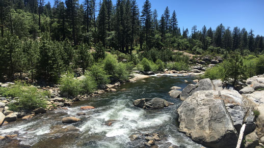 Dorrington's Stanislaus River access point:   About 38 minutes from Pinecone Hollow is Boards Crossing Stanislaus River. At the bridge area, there are picnic tables.