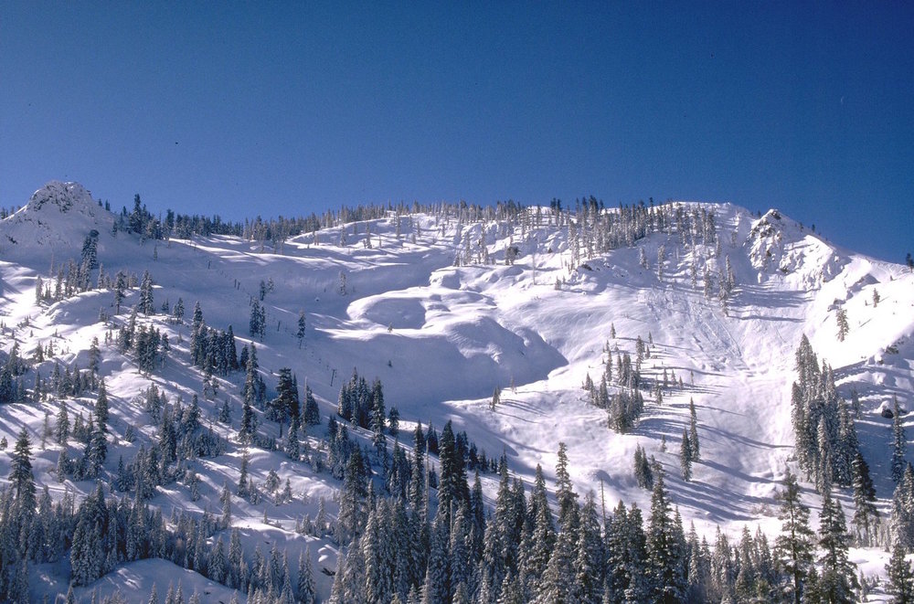 Bear Valley Ski Resort:   About 44 minutes from Pinecone Hollow. The Ski Resort's address is: 2280 state Rte 207, Bear Valley, CA